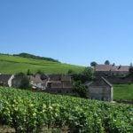 Burgunder Weinregion