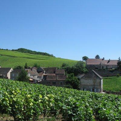 Burgunder Wein