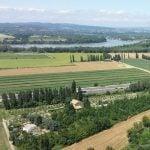 Rhône Weinregion