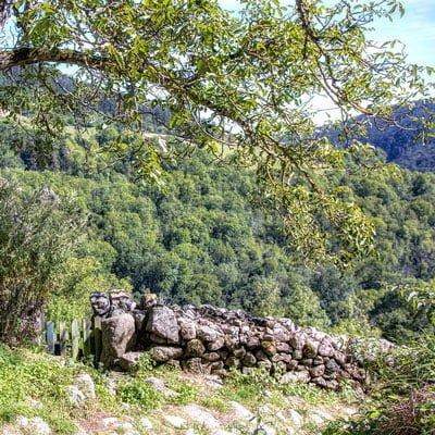 Auvergne Weinregion