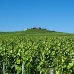 Reims Weinregion