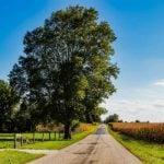 Indiana Weinregion