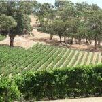 Adelaide Hills Weinregion