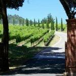 St. Helena Weinregion
