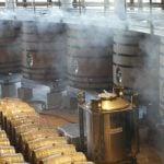Cava Weinregion