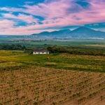 Dél-Balaton Weinregion