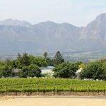 Paardeberg Weinregion