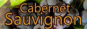 Wein mit Cabernet Sauvignon Trauben