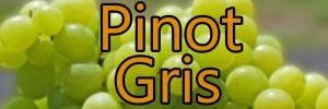 Weine mit Pinot Gris