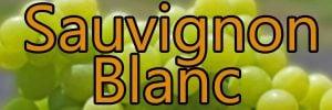 Weine mit Sauvignon Blanc trauben