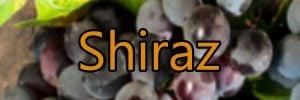 Weine mit Shiraz trauben