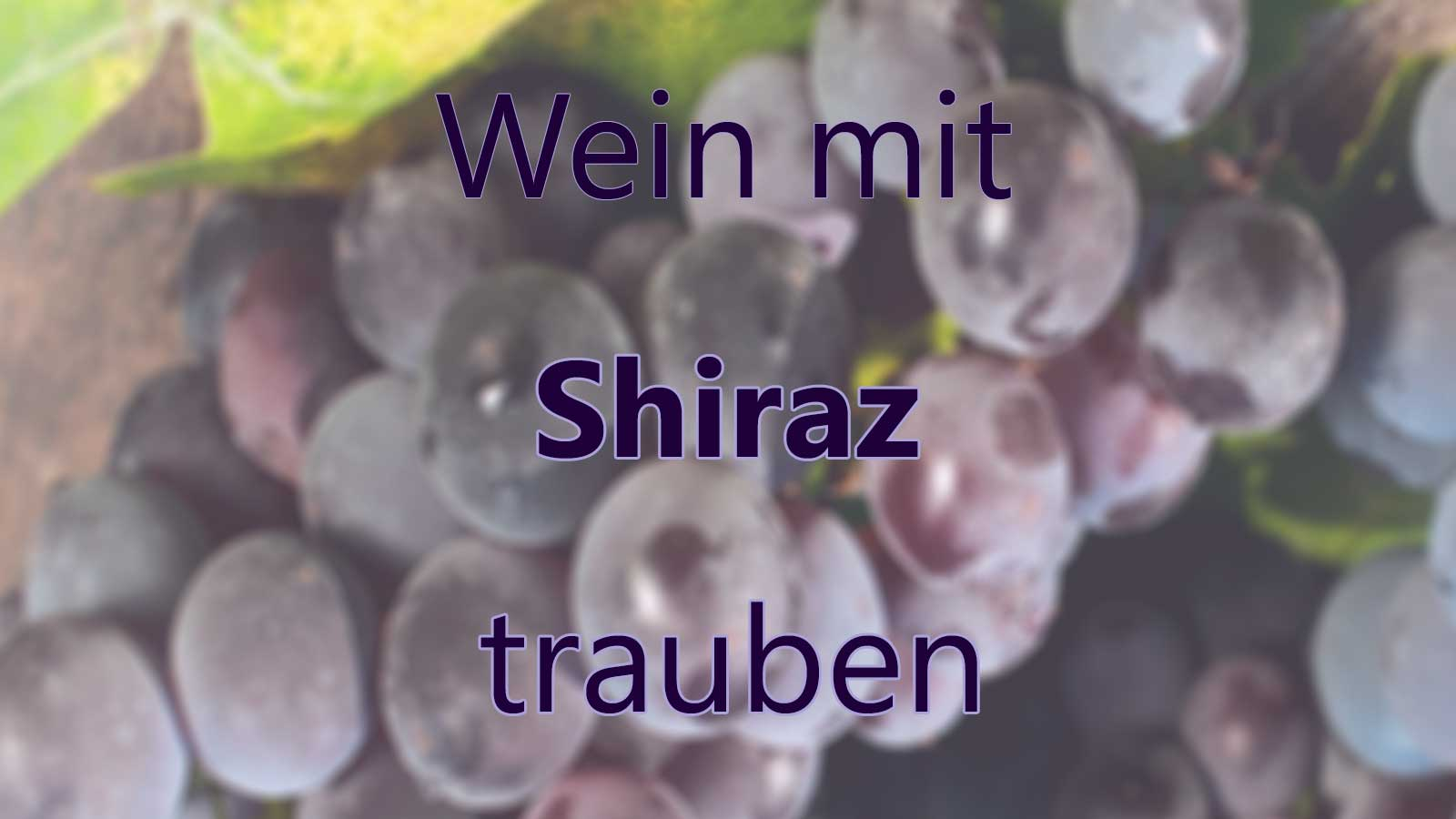 Wein mit Shiraz Trauben